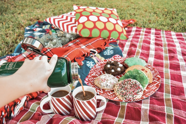 How to set up a Cozy Christmas Picnic!